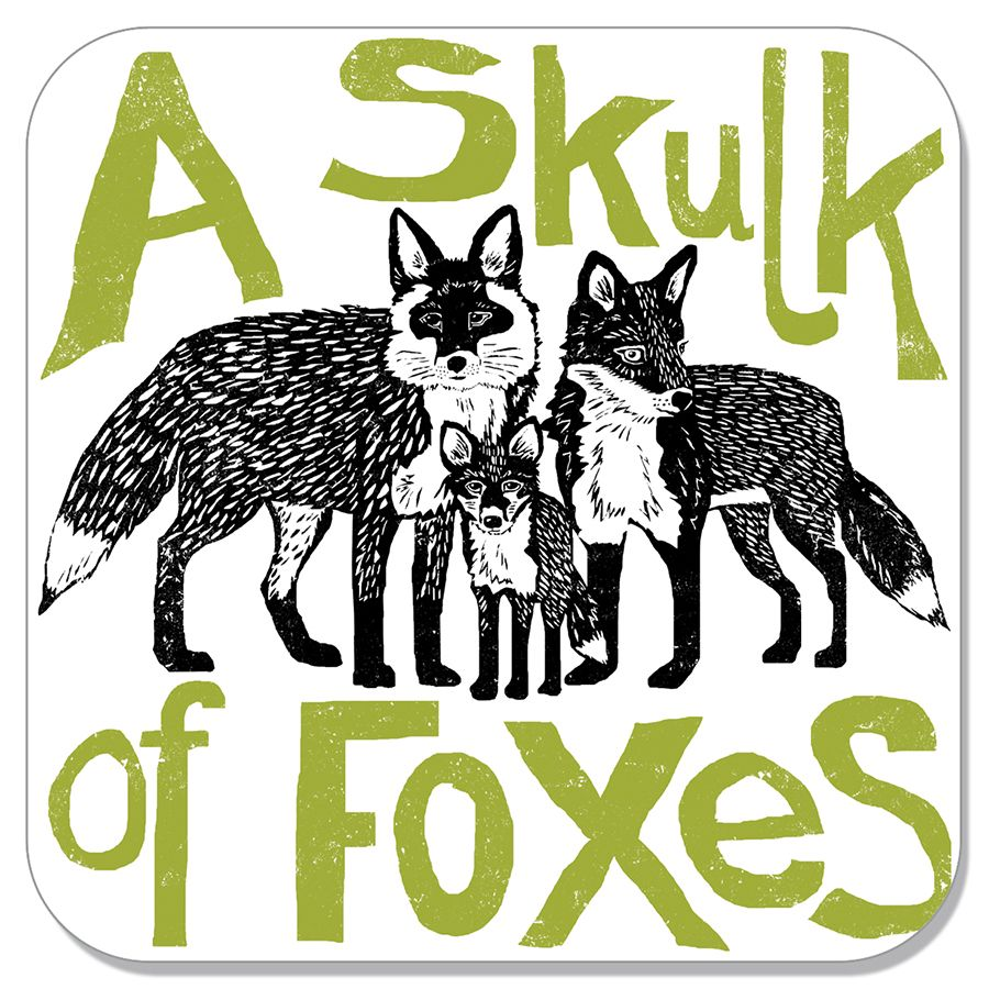 Skulk of foxes coaster Gifts in 2019