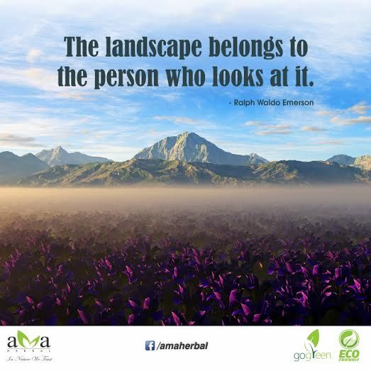 Quoteoftheday The Landscape Belongs To The Person Who Looks At It Ralph Waldo Emerson Stay With Us And Protect Environ Landscape Nature Quotes Nature