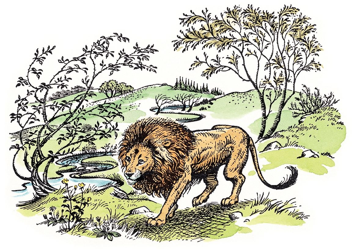 The silver chair illustrations -  You Never Knew About The Narnia Author Narnia Illustration The Character Of Puddleglum Who Appears As A Principle Character In The Silver Chair
