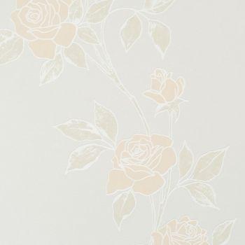 Roses Rose Pastel Orange Wallpaper By Walls Republic