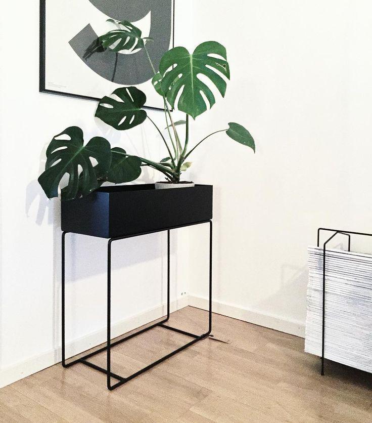 ferm living plant box black httpwwwfermlivingcomwebshopshopgreen livingplant box blackaspx home garden pinterest - Fantastisch Tolles Dekoration Ferm Living Korb