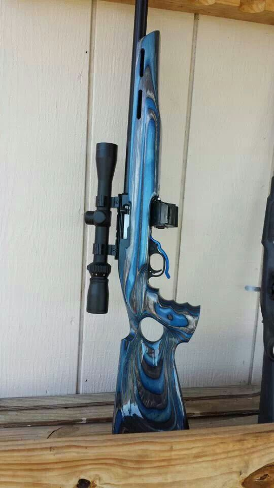 Ruger 10/22. Cool stock.
