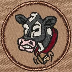 boy scout patches iron on or sew