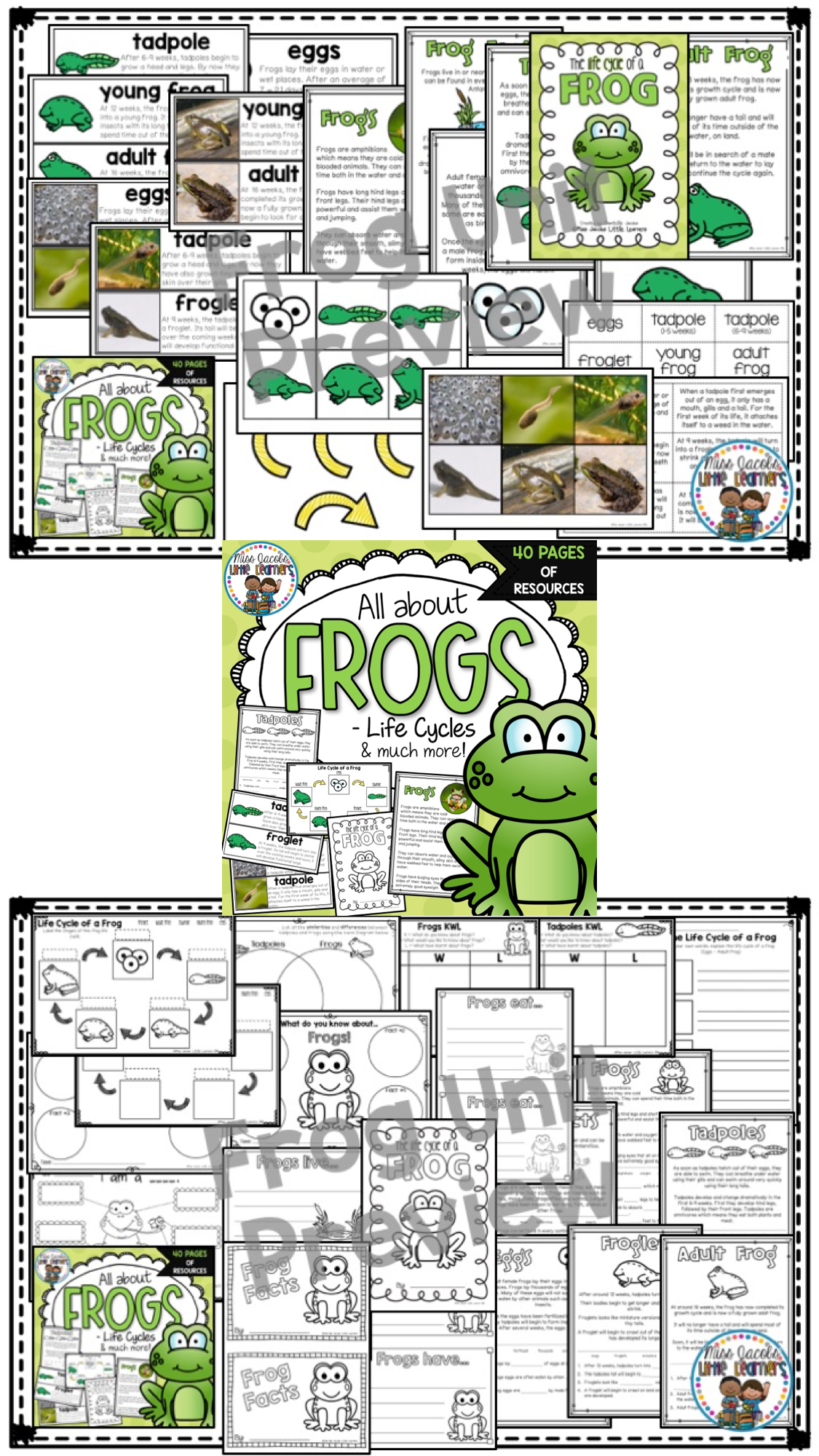 All About Frogs A Frog Non Fiction Unit Includes Frog