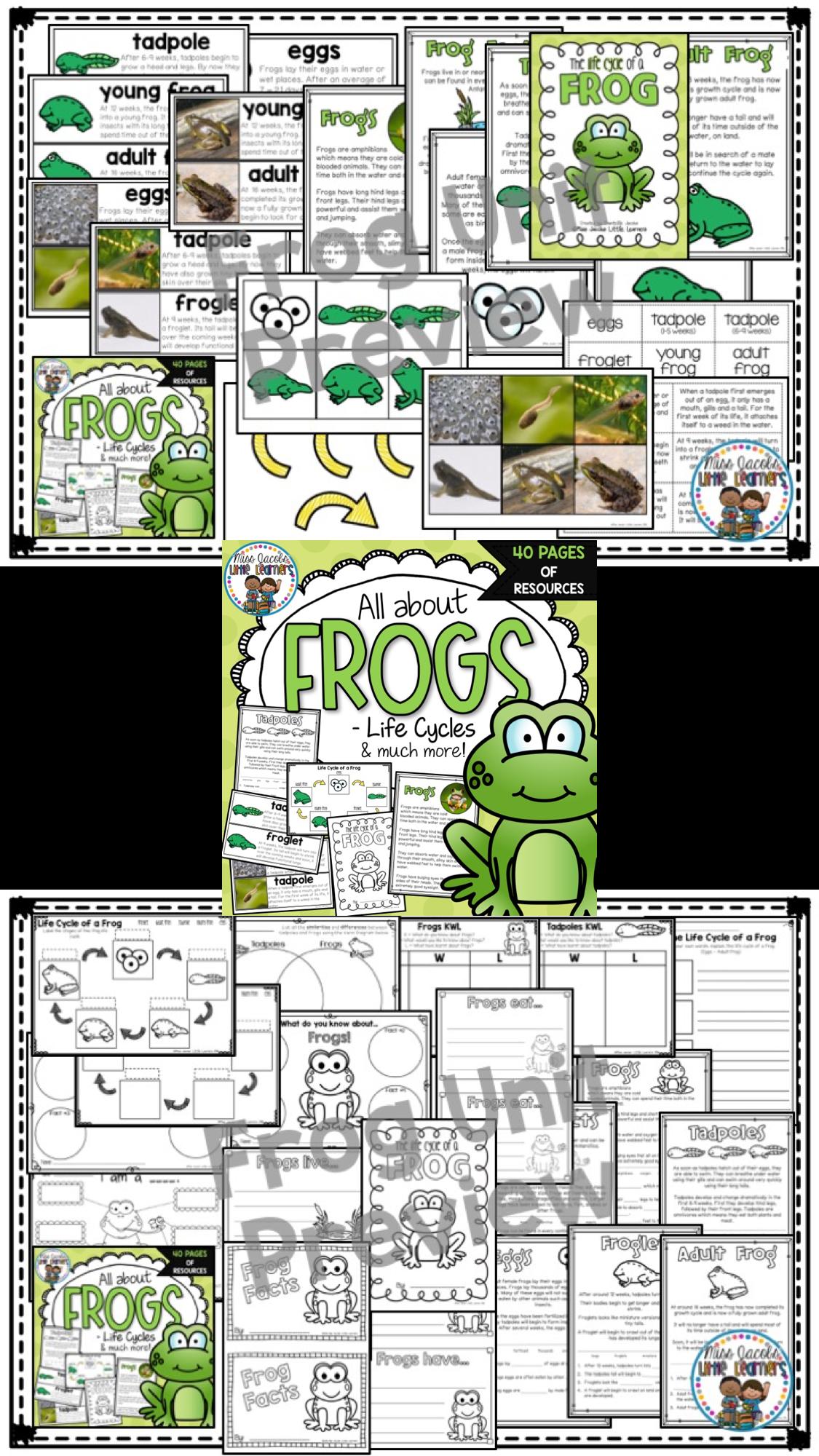 Frog Non Fiction Unit