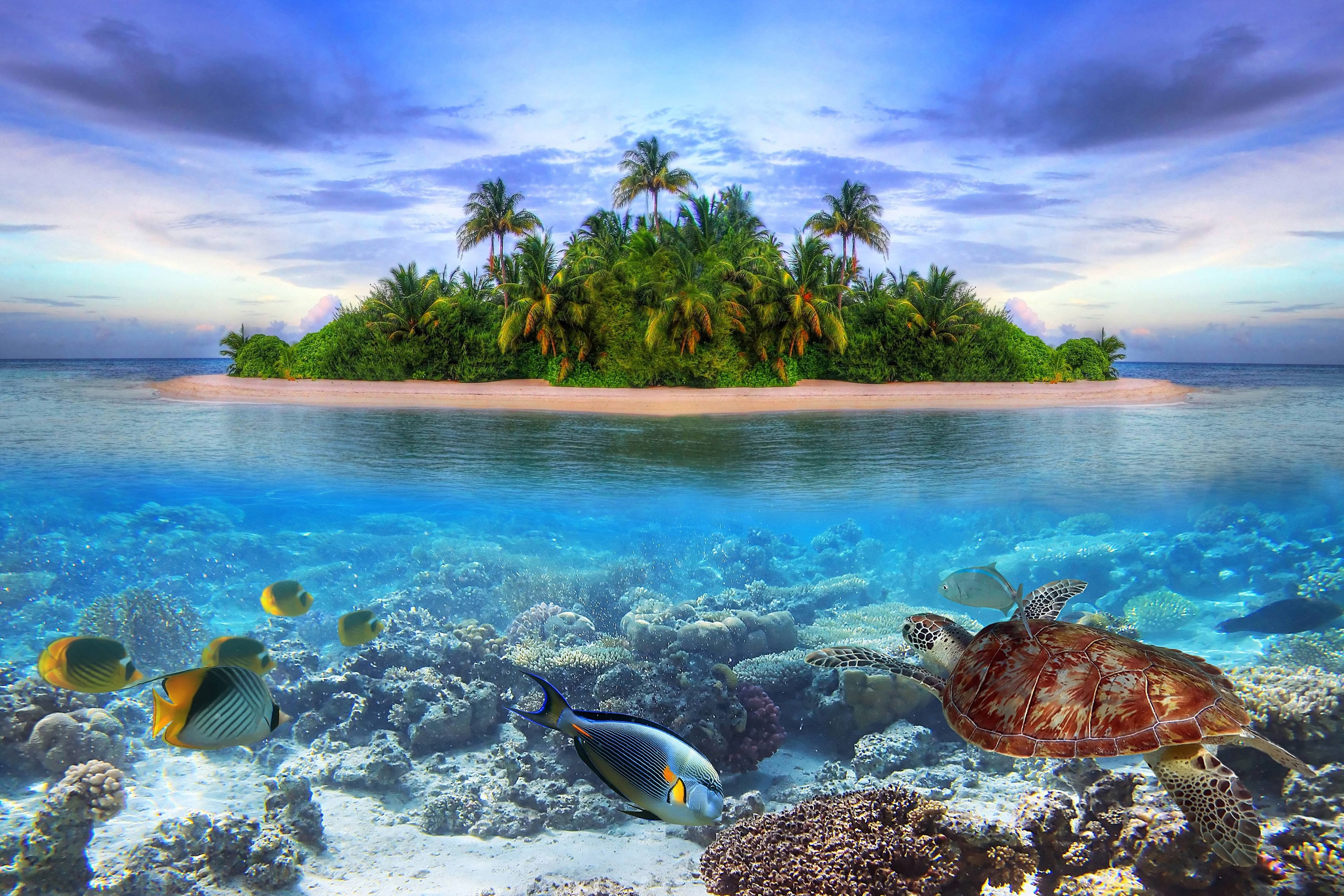 Hd Tropical Island Beach Paradise Wallpapers And Backgrounds: Pin By Kris Del Rosario On Graphic