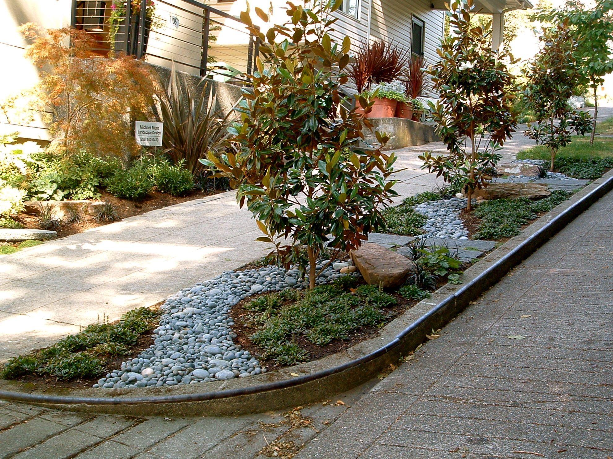 Parking Strip Gardening Queen Anne Hill Seattle Michael Muro Sidewalk Landscaping Side Garden Front Yard Landscaping