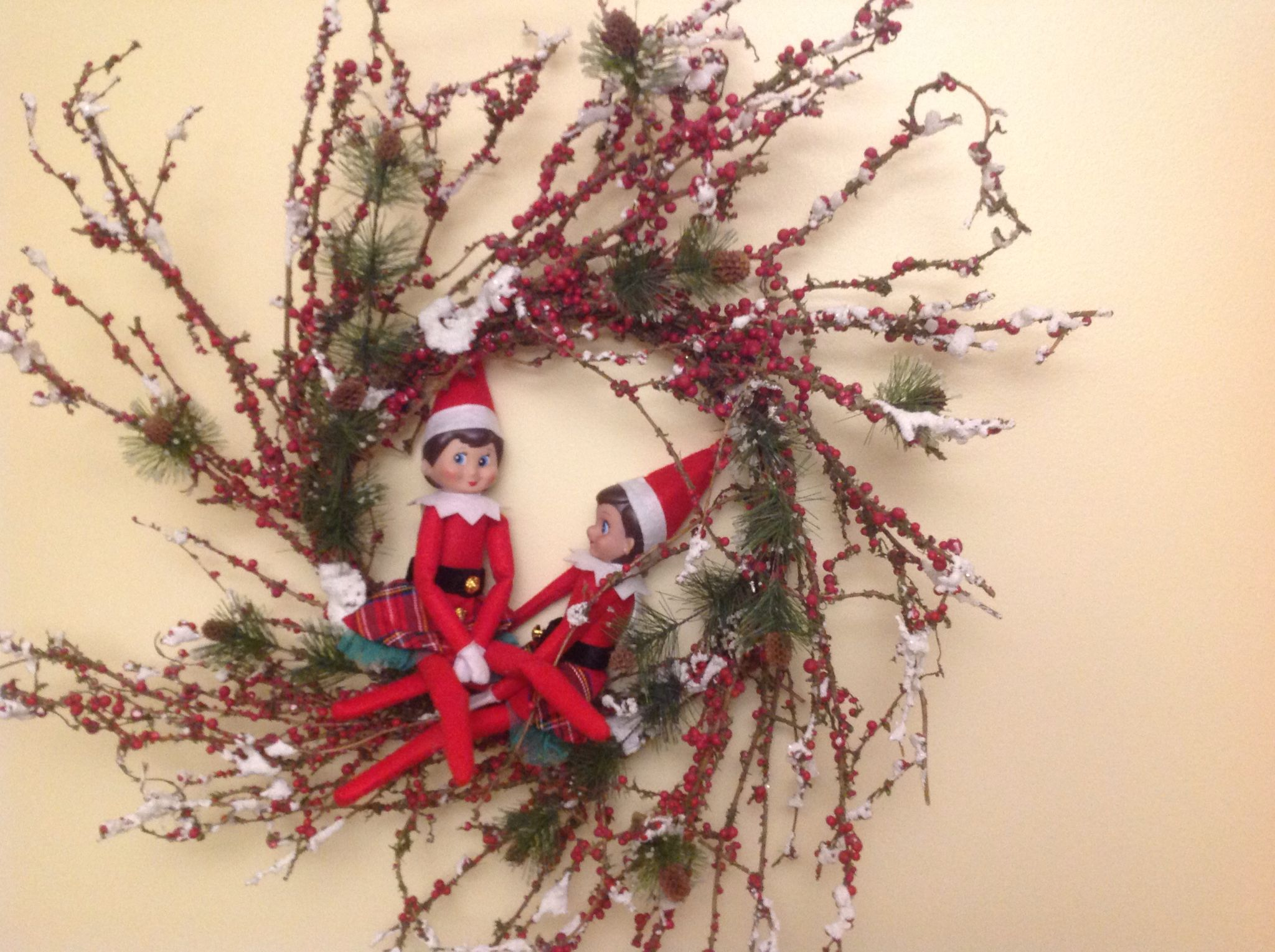 Pin by Lynn Headley Van Kampen on Christmas Elf