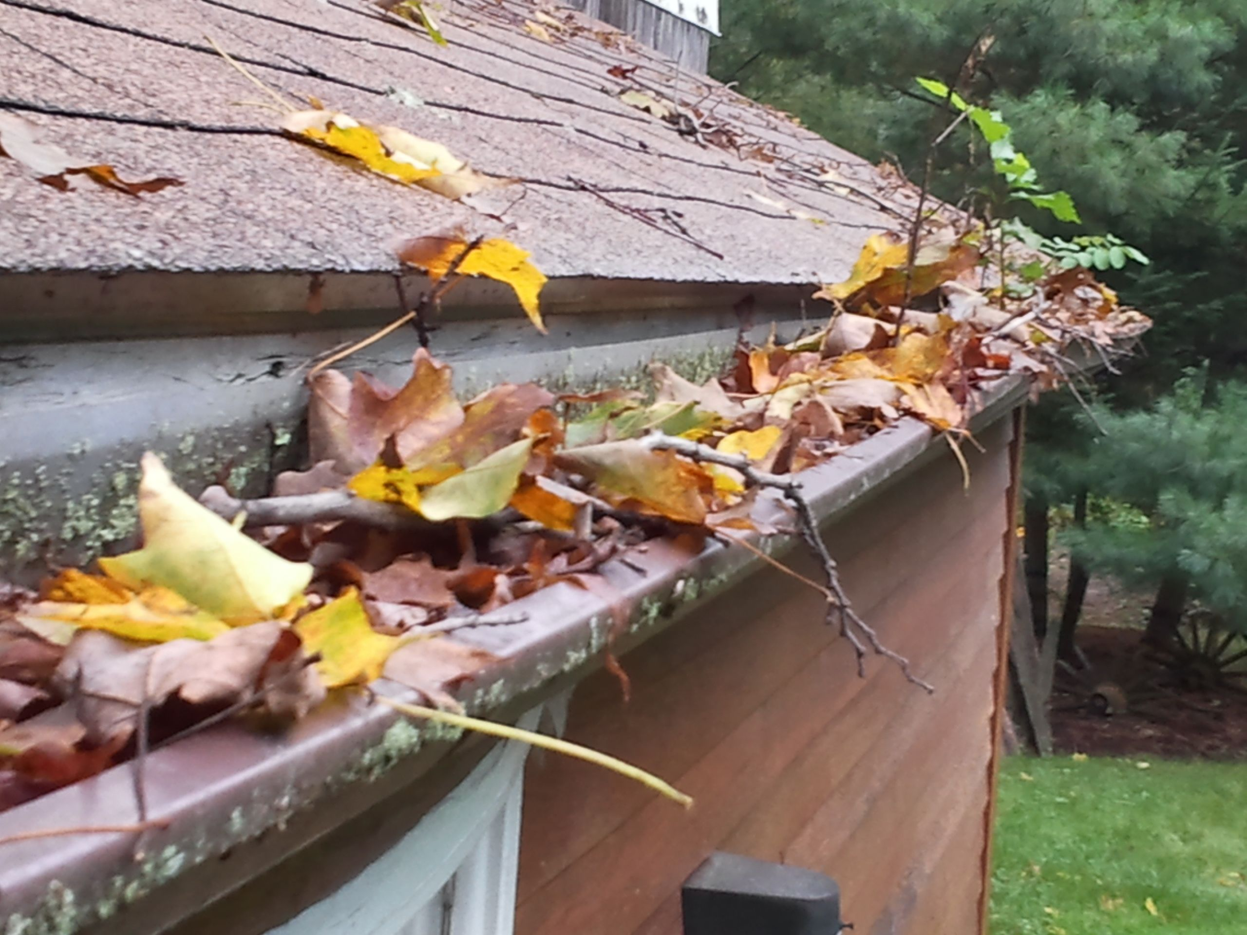 Say Goodbye To Clogged Gutters Forever Contact Tlc Today For Your No Obligation Review Of Your Gutter System Http Www Cleaning Gutters Water Damage Gutter