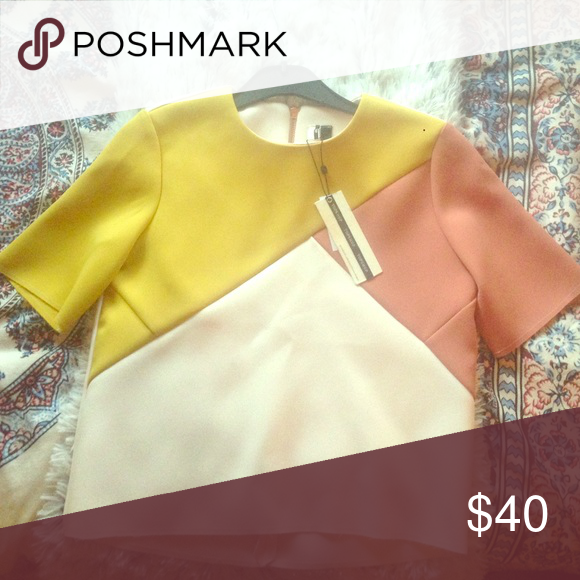 NWT TOPSHOP Color-Blocked Blouse Topshop blouse featuring color blocked pink and yellow shoulders. The rest is white with a gold zipper down the middle back. Thick fabric with unhemmed edges on the waist and sleeves. Topshop Tops Blouses