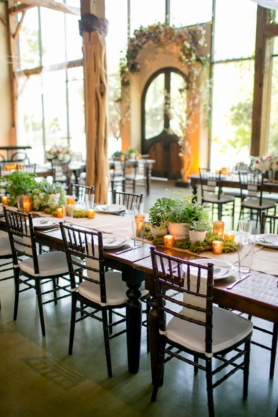 60 Unique Ways To Use Potted Plants In Your Wedding Herb Wedding Wedding Plants Wedding Floral Centerpieces