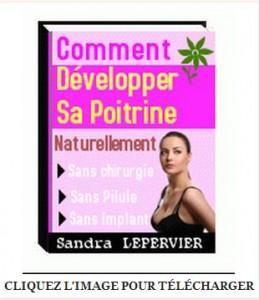 Telecharger Comment developper sa poitrine naturellement pdf gratuit Sandra Lepervier ebook | Ressources Net