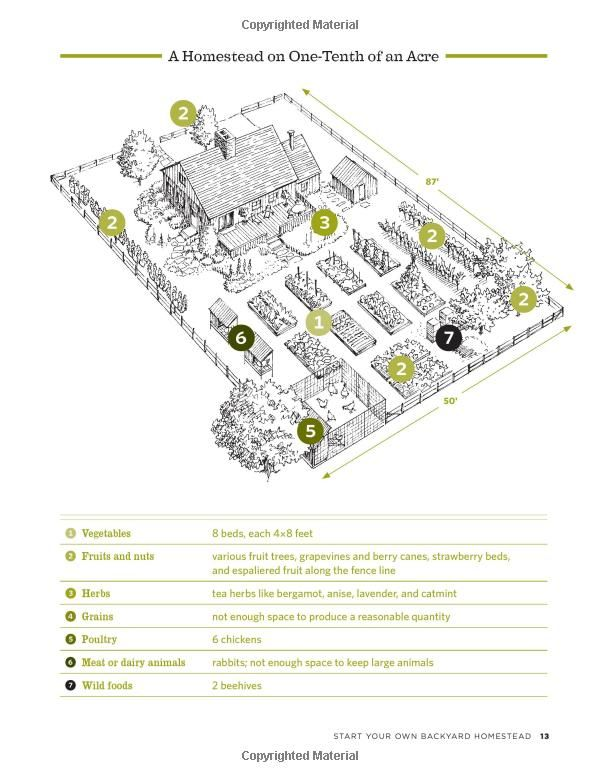 Robot Check Farm Layout Homestead Layout Homesteading