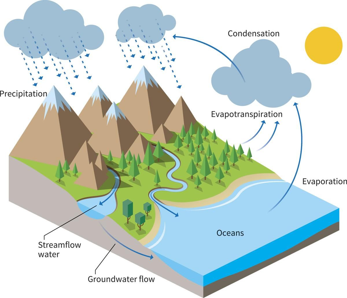 School water cycle diagram auto wiring diagram today water cycle diagram school pinterest school rh pinterest com water cycle diagram middle school water cycle ccuart Images