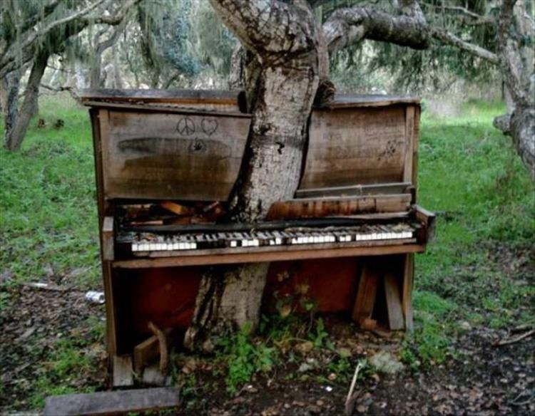 Pics Old Pianos Abandoned