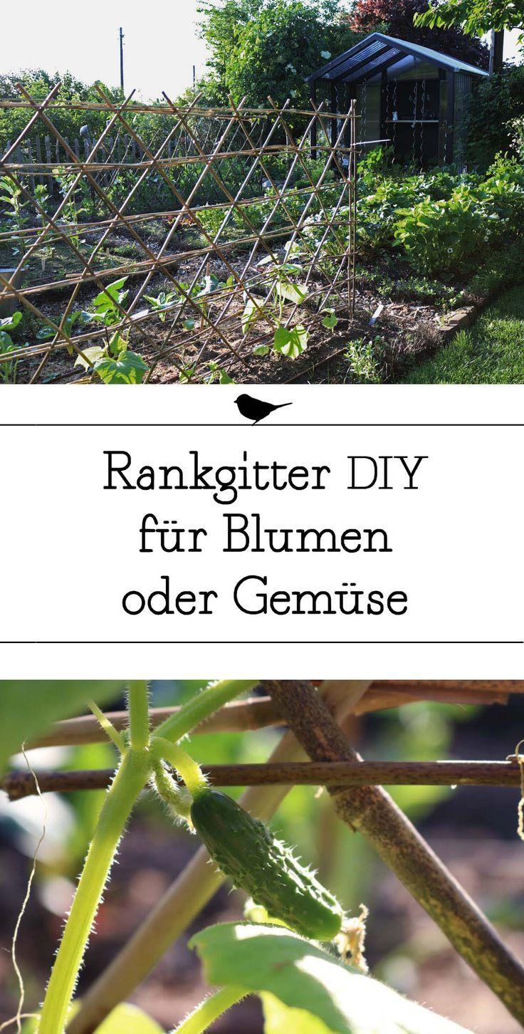 Photo of DIY aus dem Garten // Baue dir dein eigenes Rankgitter für dein Gemüsebeet ode…