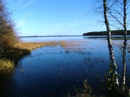 Lestijärvi lake. Central Ostrobothnia province of Western Finland - Keski-Pohjanmaa