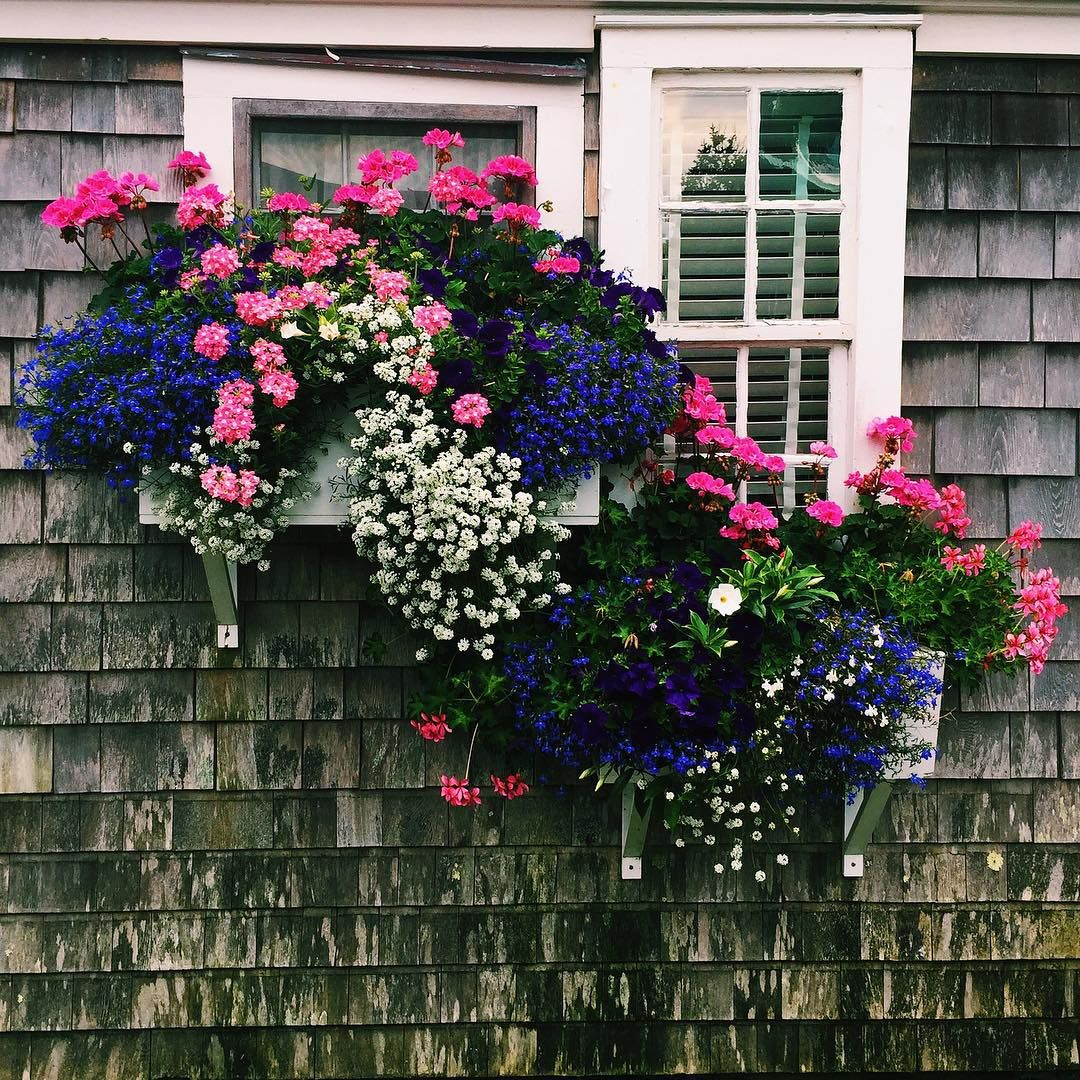 Window box ideas without flowers  simplydivinecreation alana  tafari designs  floralls  window