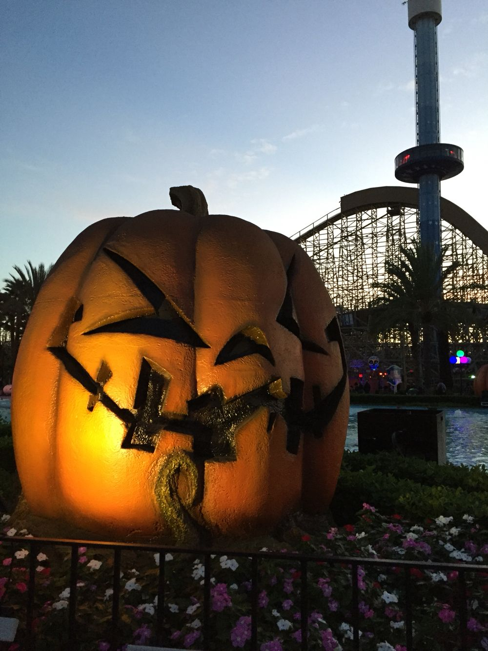 california's great america halloween haunt | destination travel