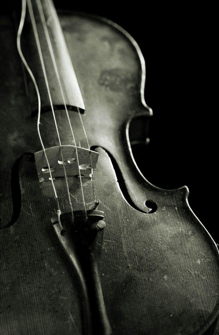 4b4b646e97912 Artistic (ZsaZsa Bellagio)   Passing the Time...   Violin, Music ...