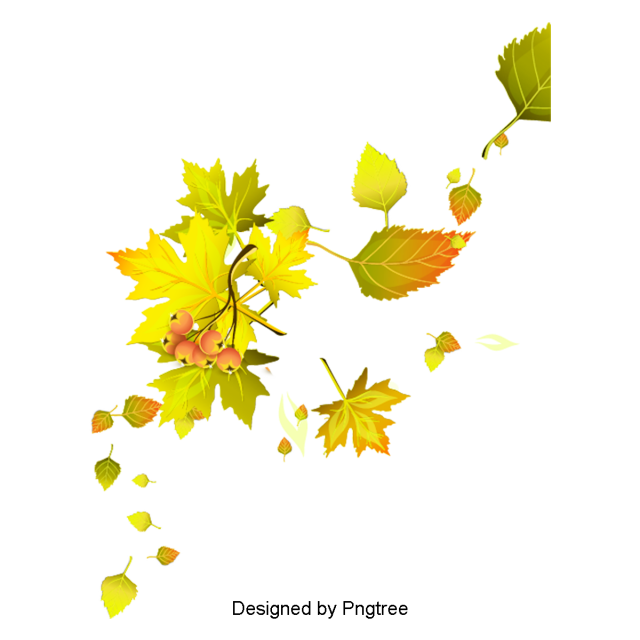 Cartoon Simple Hand Painted Autumn Leaf Design Leaves Autumn Clipart Leaves Clipart Png Transparent Clipart Image And Psd File For Free Download Leaf Clipart Free Graphic Design Leaf Design