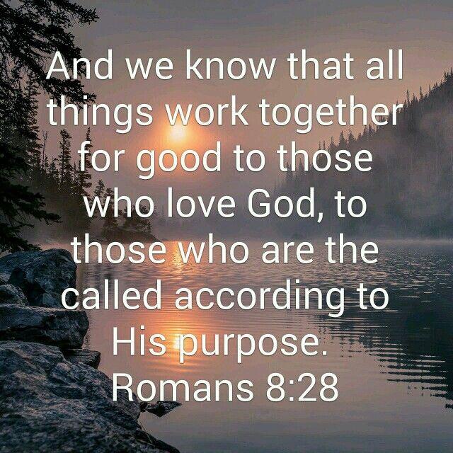 Romans 8:28 NKJV | YouVersion Bible Images | Bible images, Romans
