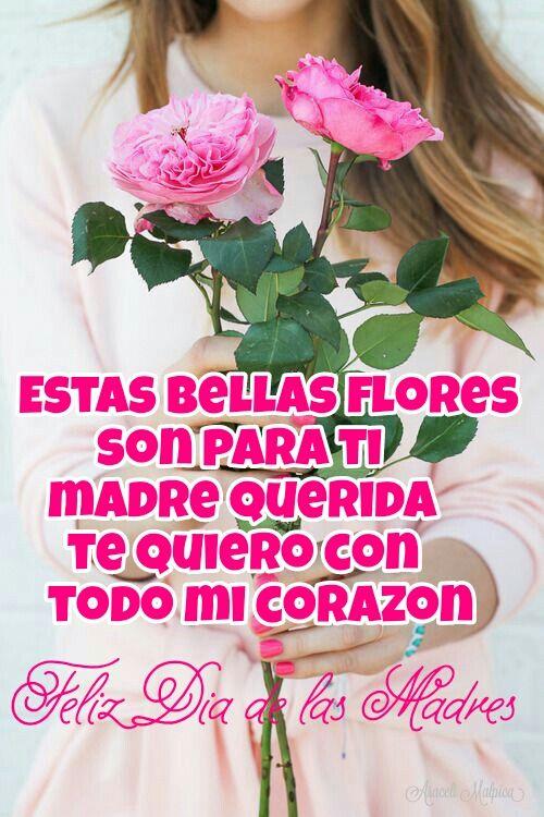 Feliz Dia De Las Madres Happy Mothers Day Happy Mothers