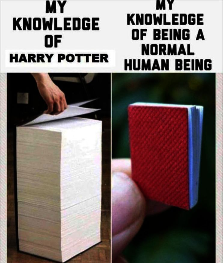 Dictionary Potter Movies Unless Spells Harry Crest House Facts World Money Long Case Harry Potter World Harry Potter Spells Harry Potter Universal
