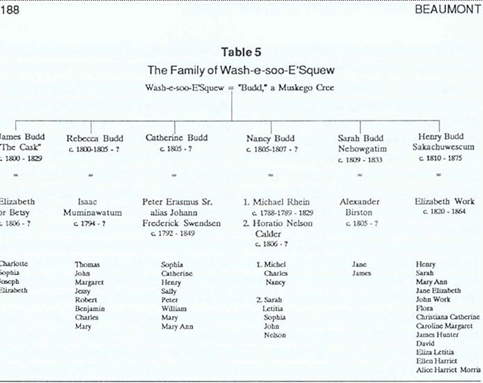 Family Chart of Muskego Budd The road is long Pinterest Ancestry