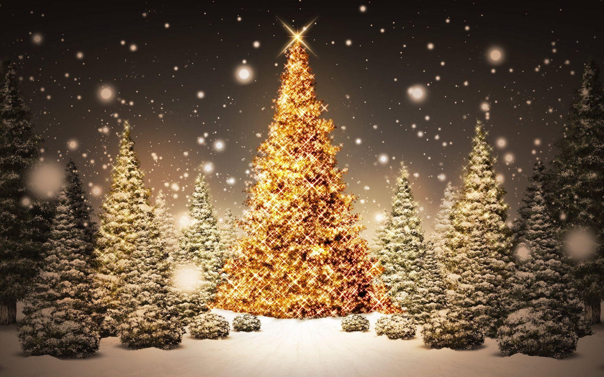 Prajeme vám príjemné prežitie vianočných sviatkov Technológie