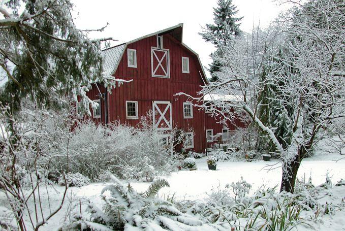 Image result for Winter on Vashon Island