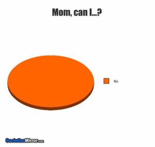 Funnypiechartsandgraphs Pie Chart 8 Kids What Your Mum Will