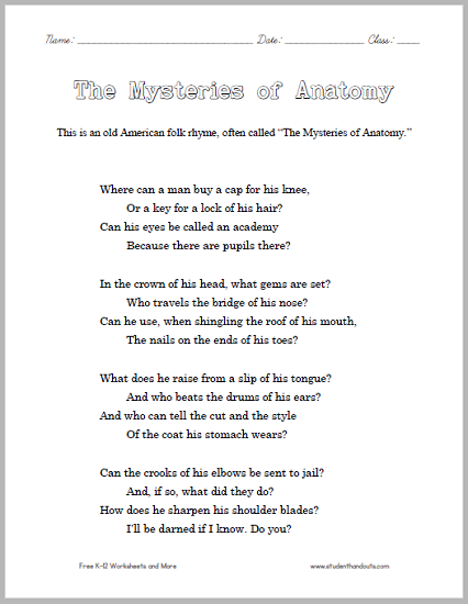 The Mysteries Of Anatomy This American Folk Rhyme Is