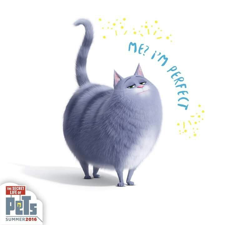 Idea By Empv On Secret Life Of Pets Animal Caricature Pets