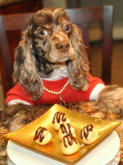 Peanut Butter Dream Puffs Treats for Dogs Peanut butter dog treats