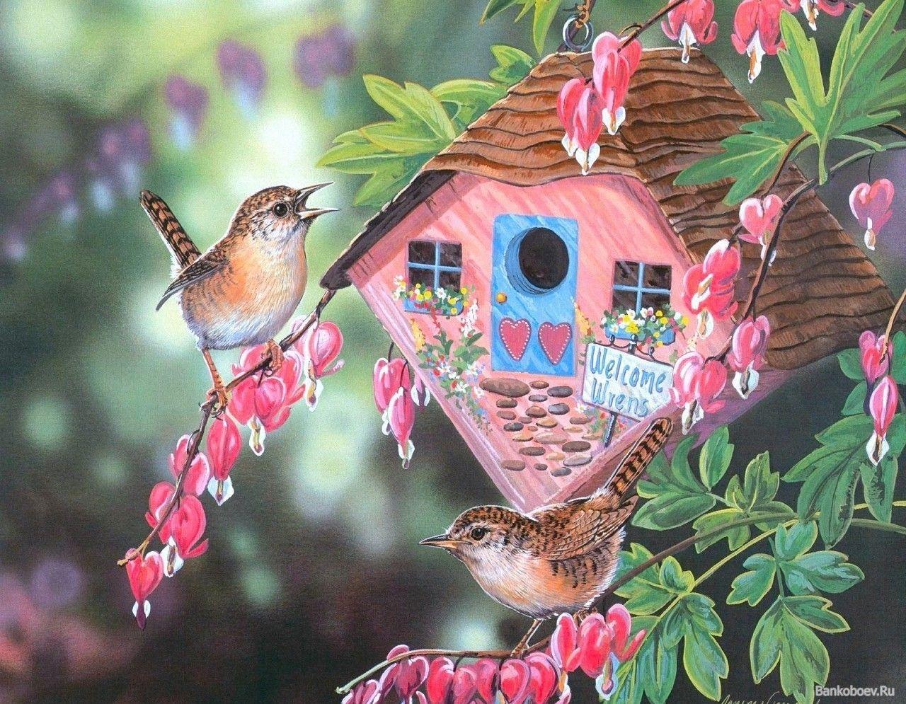 часто доброе утро картинки с птичками райскими людьми настоящими