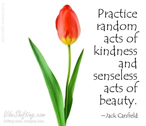 random kindness and senseless acts of beauty pdf