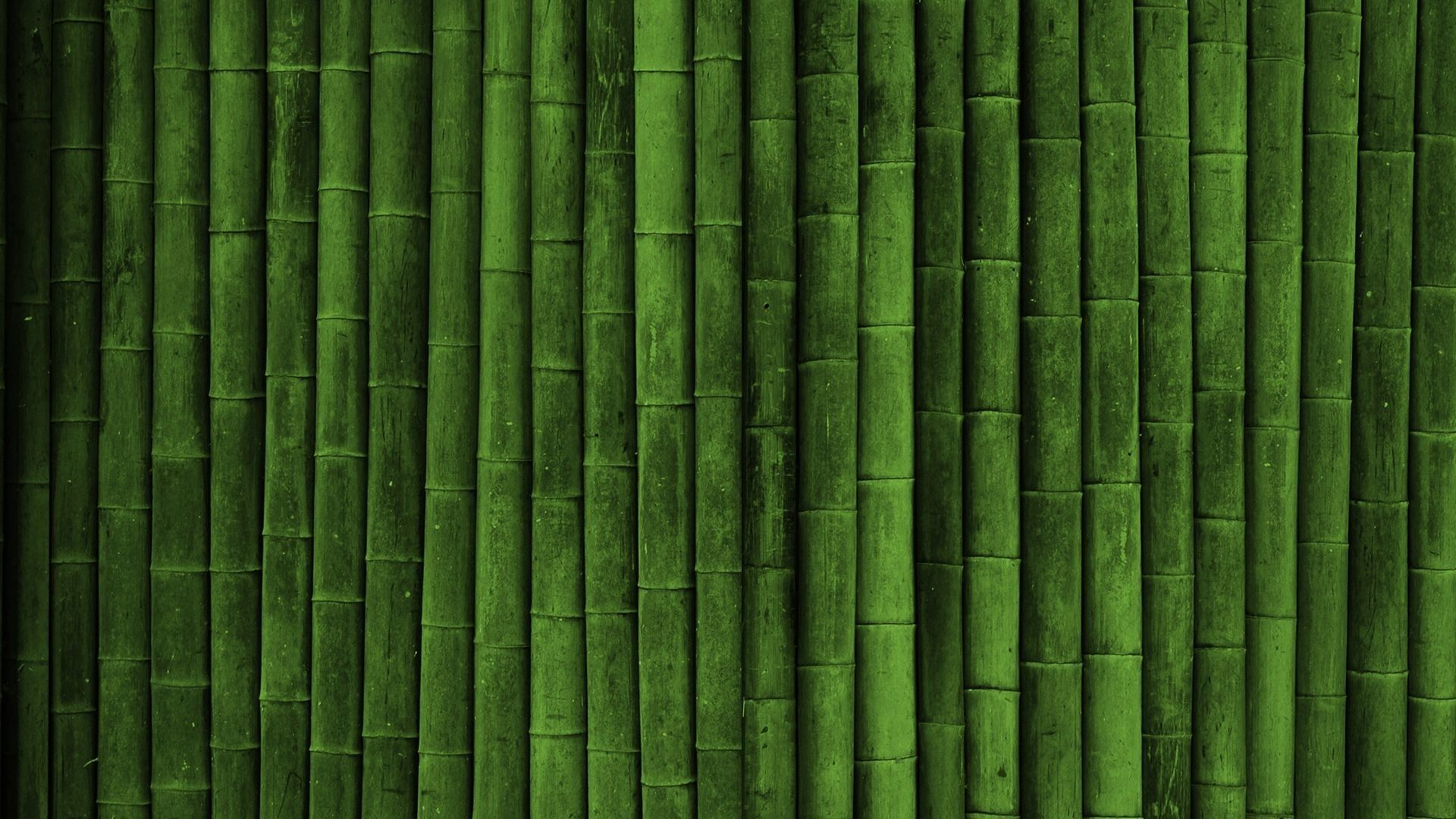 Bamboo wallpaper 8