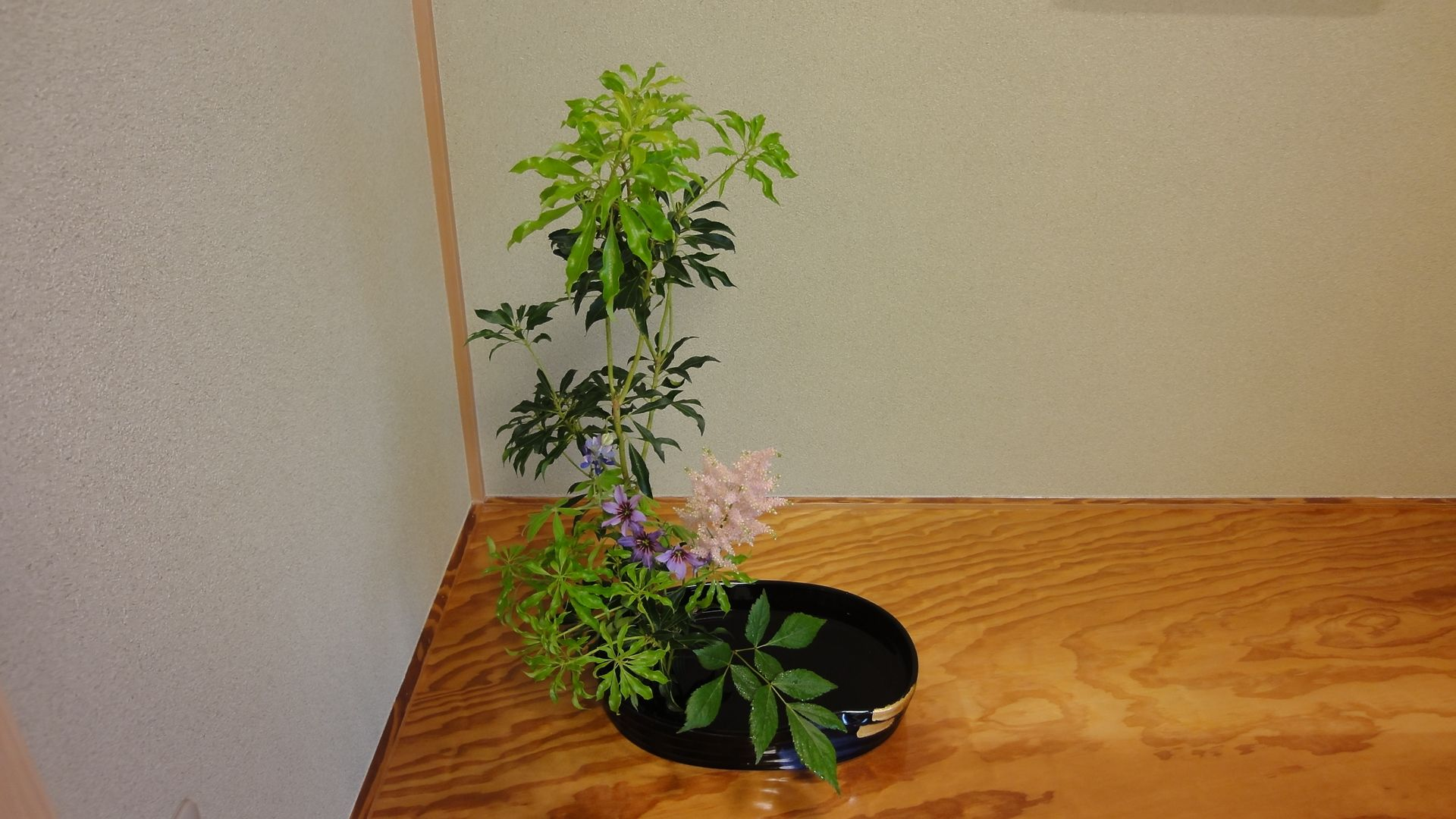 In kado (Ikebana, Japanese flower arrangement), more important than students' proficiency in arranging flowers is their ability to use their mind and all five senses to express with flowers what is in their heart in its pure state. Flowers: Japanese andromeda, Lupinus, Astilbe and Leucocoryne.