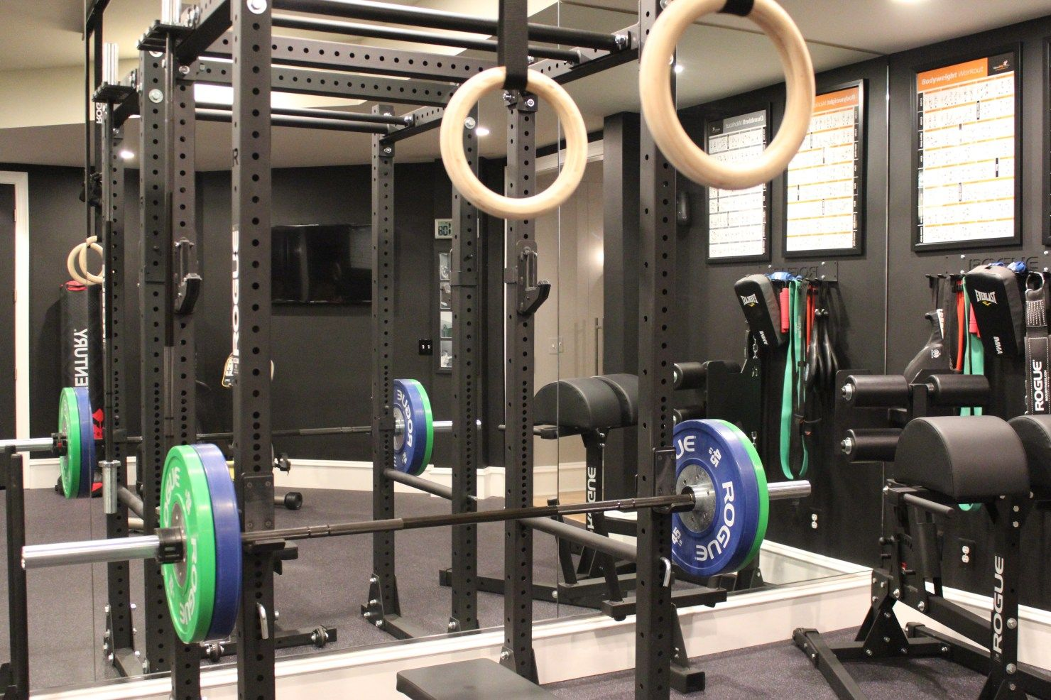 Building u201cThe Ultimate Home Gymu201d the Rogue