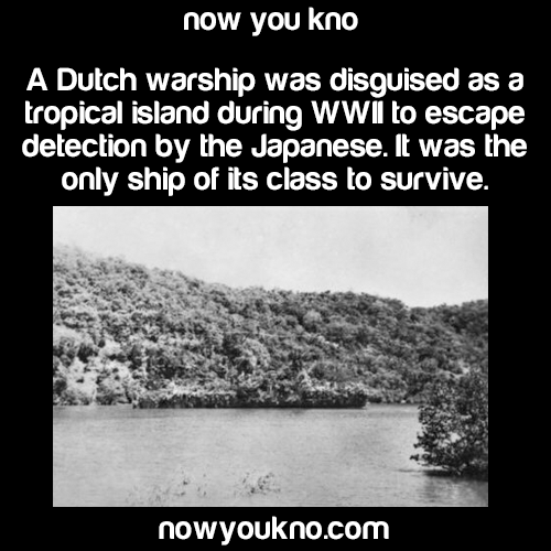 A Dutch Warship Was Disguised As A Tropical Island During Ww Fun Factscrazy