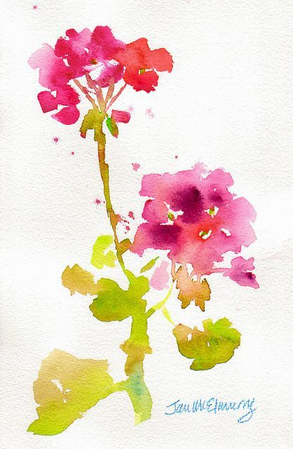 Geranium Stem Peinture Fleurs Tutoriel Fleurs Aquarelle Et
