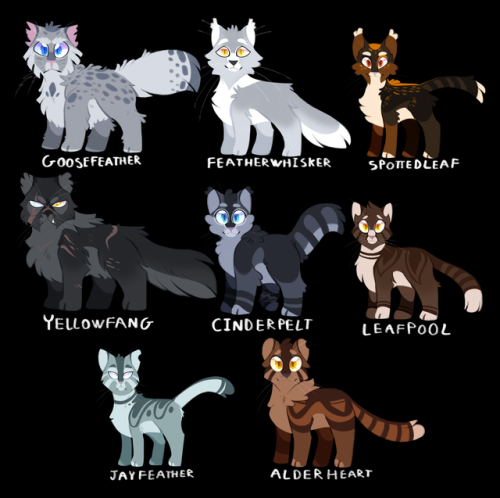 Warriors By Erin Hunter In Order