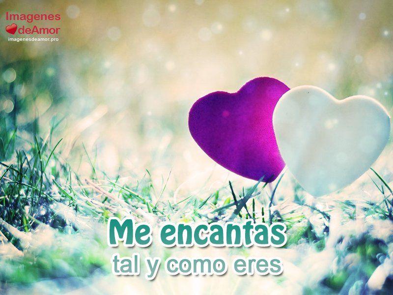 Imagenes Mas Lindas De Amor Con Frases Romanticas 4 Fer