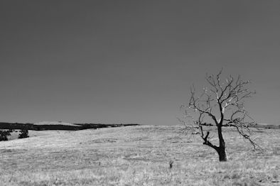 Landschap zwart/wit Mount Franklin - Australie
