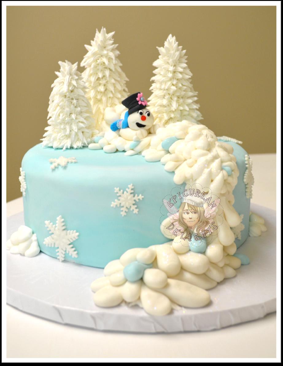 Winter Wonderland Birthday Cake Check December Baby Problems
