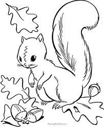 Eekhoorn Kleurplaat Educație Pinterest Fall Coloring Pages