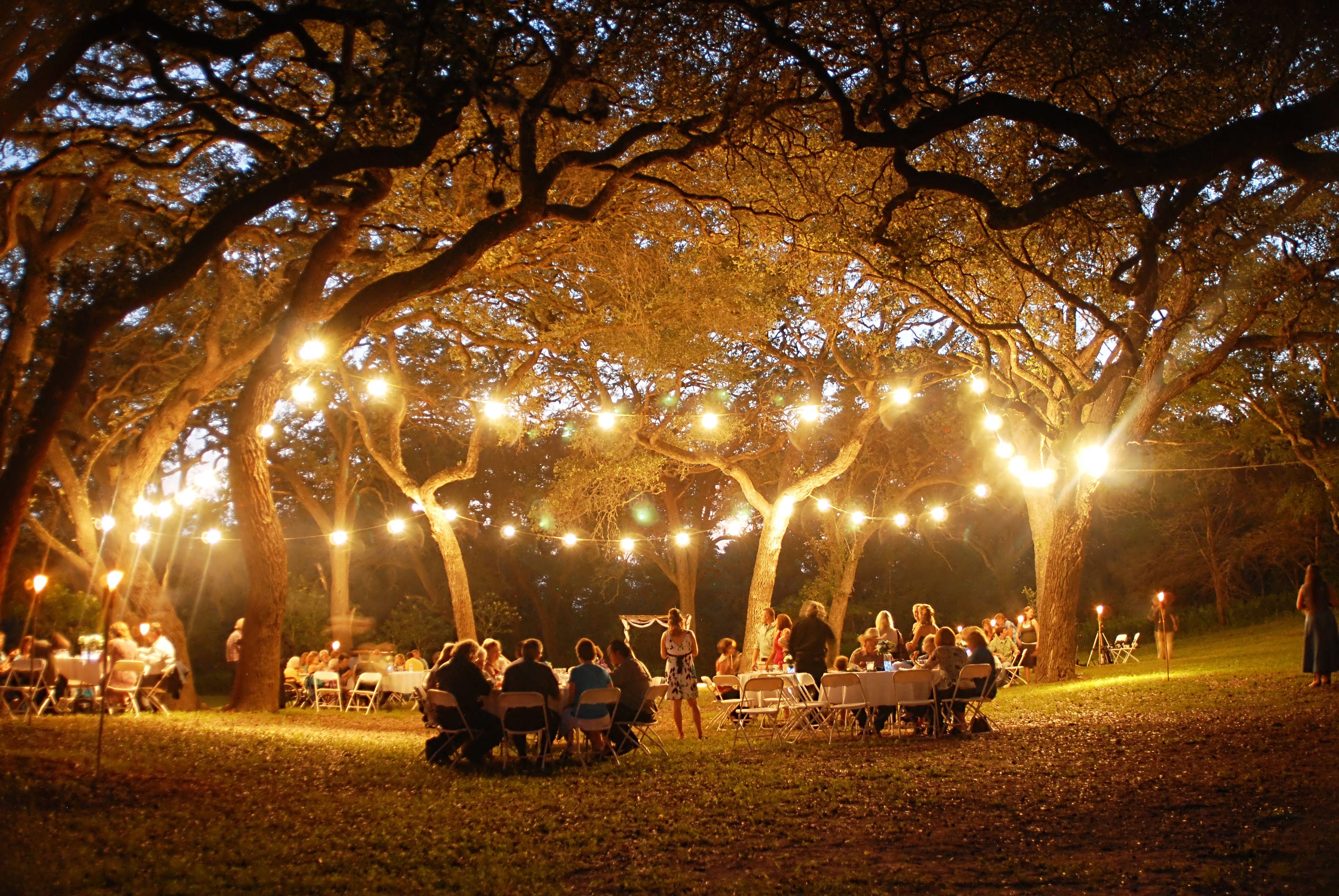outdoor wedding reception under lights in oak trees at vintage