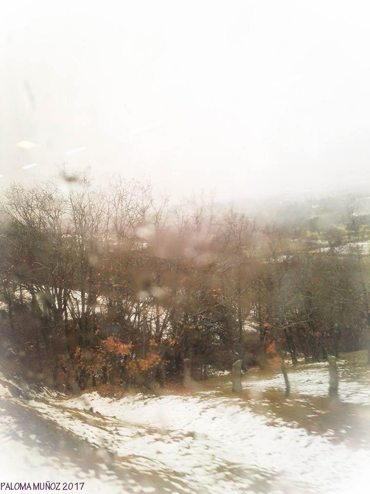Campos nevados. Desde el tren. Sierra de Madrid.
