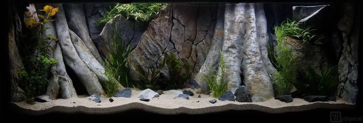 3d Backgrounds For Aquariums Available In All Measurements Our Amazonian Design Aquarium Backgrounds Fish Tank Aquarium Landscape